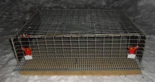 Клетка для перепелов